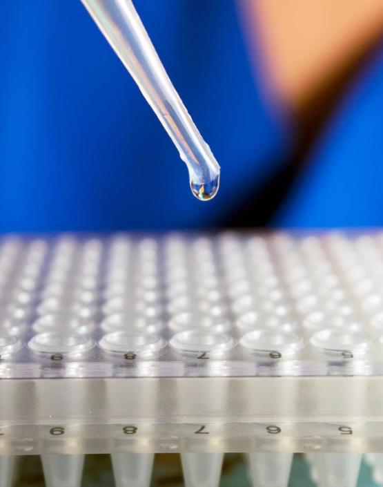 Regenerative Medicine – an Innovative Approach to Back Pain